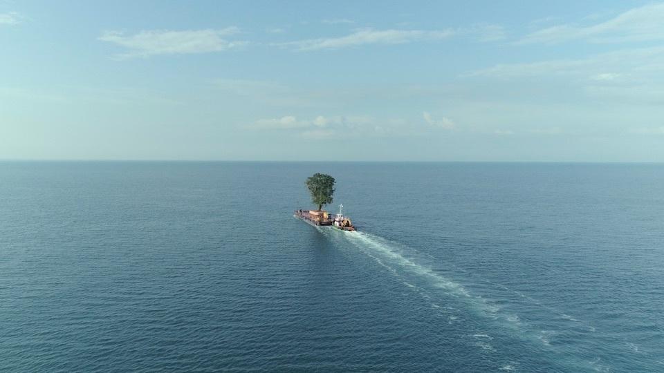 一棵樹出航的現實感:張惠菁看《總理的移動花園》